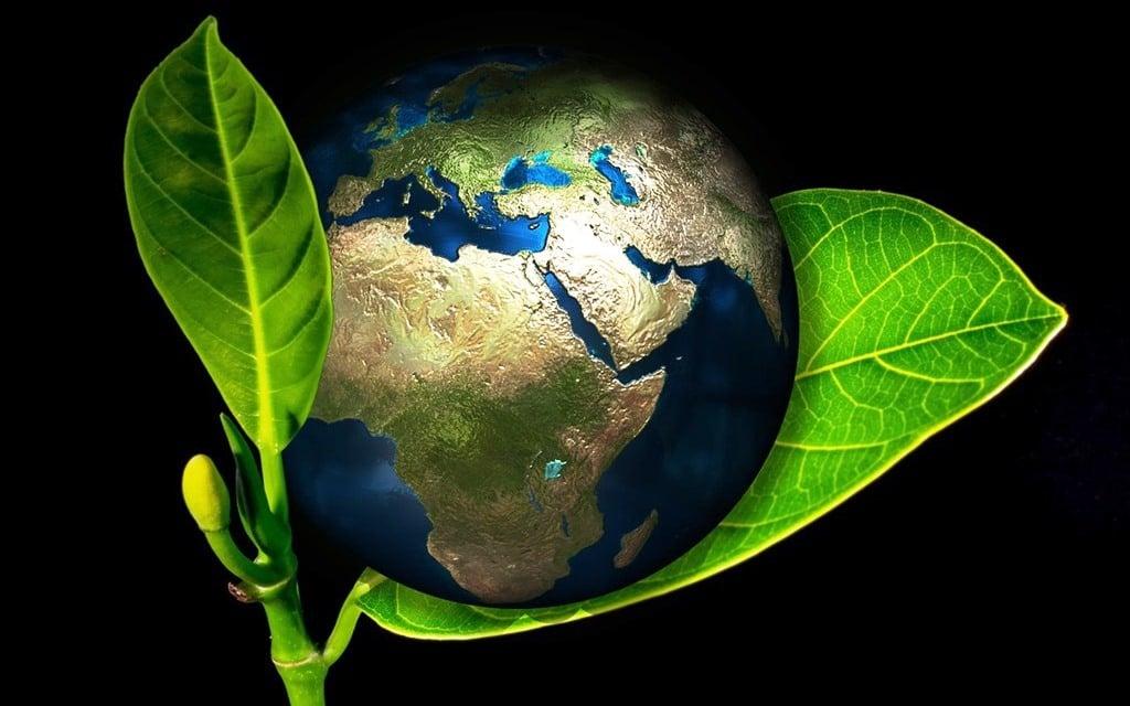Memoria Ambiental Posterior Empresa Ambiental Consultoría Medioambiental Madrid