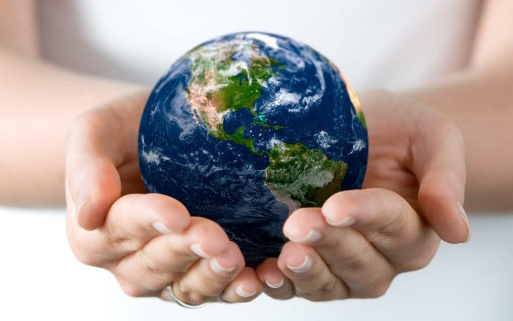 Memoria Ambiental de Actividades Empresa de Medio Ambiente - Consultoría Ambiental en Madrid