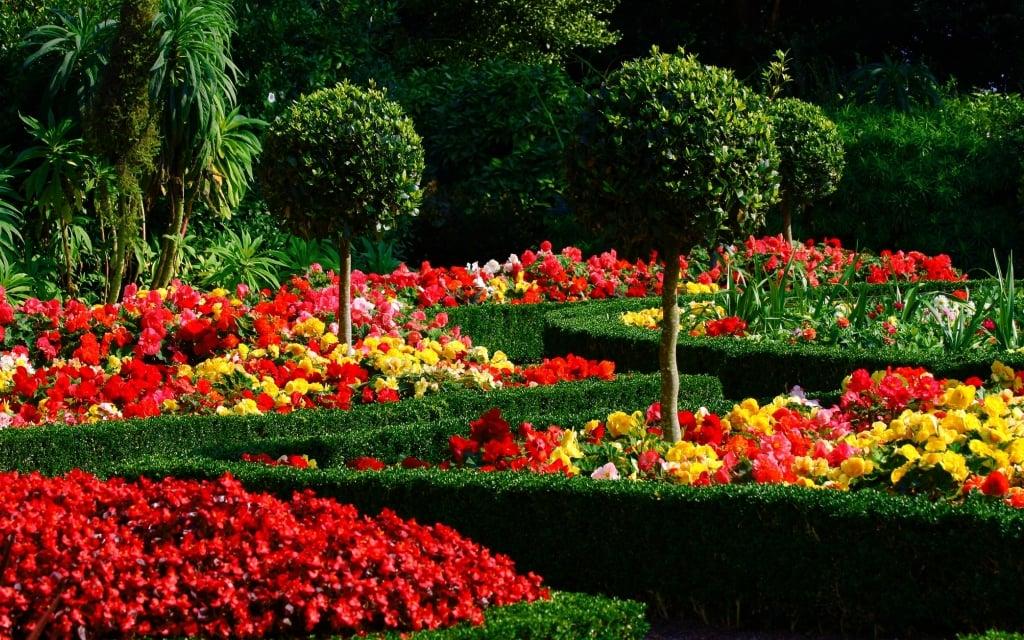 Proyectos de Jardinería Madrid Empresa